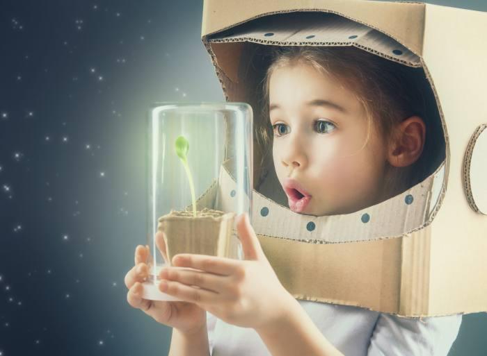 Rozwój dziecka, rozwój zawodowy, szkolenie, warsztaty